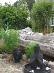 Bambus og Buddha